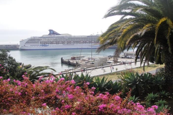 NCL Spirit kruīza kuģis piestājis ziedošajā Madeiras salā. 1420. gadā Žuans Gonsalvišs Zarku devās jūrā. Viņš atrada skaistu, ar biezu mežu apaugušu s