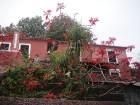 Madeira  www.remirotravel.lv 10