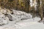 Raunas staburags ir aptuveni 3,5 m augsts un 17 m garš šūnakmens veidojums un tas ir vienīgais šāda veida dabas objekts Latvijā pēc Daugavas Staburaga 1