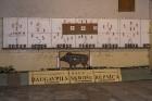 Daugavpils skrošu rūpnīca ir vecākā munīcijas ražotne Ziemeļeiropā 22