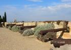 Atklāj Spānijas pilsētu Taragonu - populāro Katalonijas tūrisma galamērķi 14