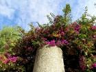 Atklāj Spānijas pilsētu Taragonu - populāro Katalonijas tūrisma galamērķi 18