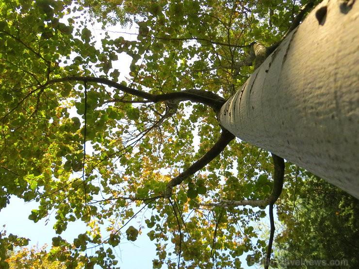 Svētās Klotildes dārzi Katalonijā apbur un vieno ar dabu www.lloretdemar.org 149924