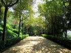 Svētās Klotildes dārzi Katalonijā apbur un vieno ar dabu www.lloretdemar.org 5