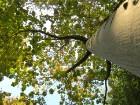 Svētās Klotildes dārzi Katalonijā apbur un vieno ar dabu www.lloretdemar.org 6