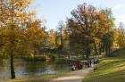 Cēsis ir brīnišķīga pilsēta zelta rudens baudīšanai 34