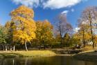 Šis ir īstais brīdis, lai apskatītu Cēsu pilsētas krāšņākās ainavas zelta rudens nokrāsās 1
