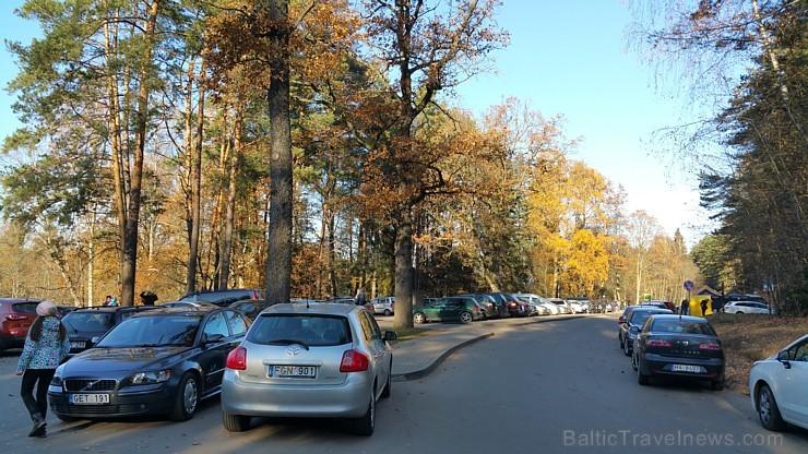 Travelnews.lv sadarbībā ar autonomu Sixt.lv iepazīst Lietuvas koku galotņu taku, kas atrodas 60 km no Paņevežas jeb 10 km no Anīkščai