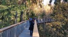 Travelnews.lv sadarbībā ar autonomu Sixt.lv iepazīst Lietuvas koku galotņu taku, kas atrodas 60 km no Paņevežas jeb 10 km no Anīkščai 12