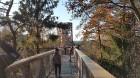 Travelnews.lv sadarbībā ar autonomu Sixt.lv iepazīst Lietuvas koku galotņu taku, kas atrodas 60 km no Paņevežas jeb 10 km no Anīkščai 13