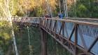 Travelnews.lv sadarbībā ar autonomu Sixt.lv iepazīst Lietuvas koku galotņu taku, kas atrodas 60 km no Paņevežas jeb 10 km no Anīkščai 16