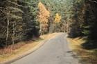 Travelnews.lv sadarbībā ar autonomu Sixt.lv iepazīst Lietuvas koku galotņu taku, kas atrodas 60 km no Paņevežas jeb 10 km no Anīkščai 31
