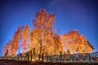 Par godu Lietuvas Republikas neatkarības dienai - iepazīsti valsts dabu! Vai vari pateikt, kur fotogrāfija ir uzņemta? Foto: Jānis Trautmanis 25