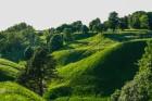 Par godu Lietuvas Republikas neatkarības dienai - iepazīsti valsts dabu! Vai vari pateikt, kur fotogrāfija ir uzņemta? Foto: Jānis Trautmanis 28