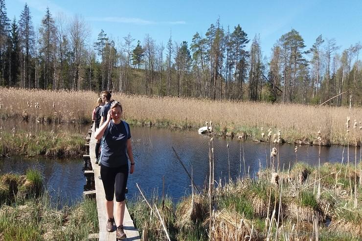 Travelnews.lv apceļo noslēpumainos Entu ezerus un Rīsas purva dabas taku Igaunijā