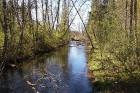 Travelnews.lv apceļo noslēpumainos Entu ezerus un Rīsas purva dabas taku Igaunijā 7