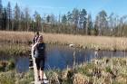 Travelnews.lv apceļo noslēpumainos Entu ezerus un Rīsas purva dabas taku Igaunijā 8