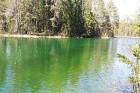 Travelnews.lv apceļo noslēpumainos Entu ezerus un Rīsas purva dabas taku Igaunijā 18