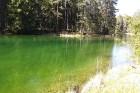 Travelnews.lv apceļo noslēpumainos Entu ezerus un Rīsas purva dabas taku Igaunijā 22