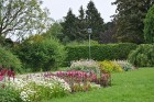 Augusts Nacionālajā botāniskajā dārzā Salaspilī lutina ar īstu ziedošo pasaku 9