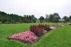 Augusts Nacionālajā botāniskajā dārzā Salaspilī lutina ar īstu ziedošo pasaku 11