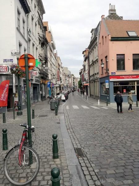 Visā Briselē regulāri redzami biznesiņi - gan restorāni, gan veikali, gan dažādas studijas u.c. Protams, arī daudz viesnīcu un cita veida dzīvība.
