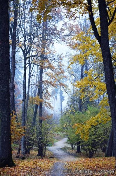 Alūksnē jau var izbaudīt Zelta rudeni. Foto: Žanete Ludviga.