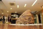 Pārdaugavas viesnīcā «Islande Hotel» mākslimiece Sandra Savicka atklāj personālizstādi 3