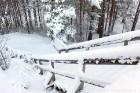 Ventspils «Lemberga hūtē» bauda sniegu, bet gaida salu, lai tas varētu noturēties 11