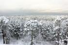Ventspils «Lemberga hūtē» bauda sniegu, bet gaida salu, lai tas varētu noturēties 13