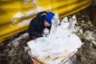 Jelgavā tapušas pirmās 30 ledus skulptūras 14