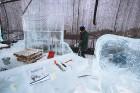 Jelgavā tapušas pirmās 30 ledus skulptūras 23