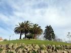 Travelnews.lv divās dienās «izskrien cauri» Portugāles skaistākajai pilsētai - Porto 22