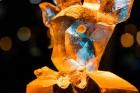 Aizvadīts Starptautiskais Ledus skulptūru festivāls 21