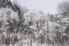 Aizraujošās, sniegotās cīņās aizvada «Rallijs Sarma 2018» 22
