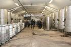 Travelnews.lv viesojas pie ABAVAS ģimenes vīna darītavas saimniekiem 35