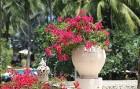 Travelnews.lv kopā ar «365 brīvdienas» un «Turkish Airlines» iepazīst Puketas salas viesnīcu piedāvājumu 29