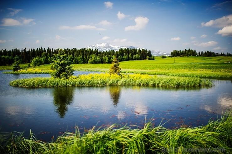 Iepazīsti Zviedrijas dabas dažādību. Foto: Simon Paulin/imagebank.sweden.se