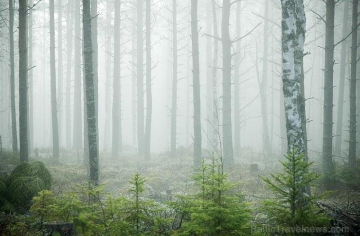 Iepazīsti Zviedrijas dabas dažādību. Foto: Sara Ingman/imagebank.sweden.se