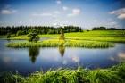 Iepazīsti Zviedrijas dabas dažādību. Foto: Simon Paulin/imagebank.sweden.se 1