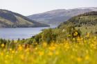 Iepazīsti Zviedrijas dabas dažādību. Foto: Niclas Vestefjell/imagebank.sweden.se 5