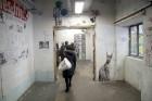 Urbānās Parīzes nekurienes vidū - mākslinieku mājā - meklējams smalks restorāniņš «The Office» 4
