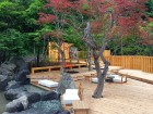 Japānas pilsētā Saporo dabas skaistums mijas ar pilsētas burzmu 13