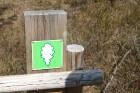 Travelnews.lv kopā ar «Dabas Sporta Zāli» dodas pārgājienā pa Ķemeru Nacionālo parku 20