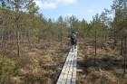 Travelnews.lv kopā ar «Dabas Sporta Zāli» dodas pārgājienā pa Ķemeru Nacionālo parku 21