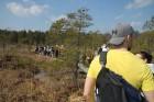 Travelnews.lv kopā ar «Dabas Sporta Zāli» dodas pārgājienā pa Ķemeru Nacionālo parku 24