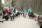 Travelnews.lv kopā ar «Dabas Sporta Zāli» dodas pārgājienā pa Ķemeru Nacionālo parku 31