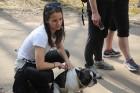 Travelnews.lv kopā ar «Dabas Sporta Zāli» dodas pārgājienā pa Ķemeru Nacionālo parku 37