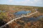 Travelnews.lv kopā ar «Dabas Sporta Zāli» dodas pārgājienā pa Ķemeru Nacionālo parku 47
