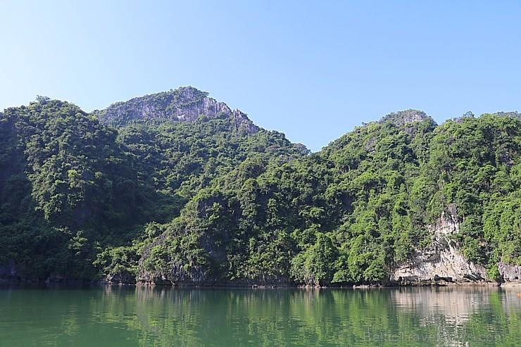 Travelnews.lv ar vjetnamiešu laivu Halongas līcī apciemo savvaļas pērtiķus. Sadarbībā ar 365 brīvdienas un Turkish Airlines